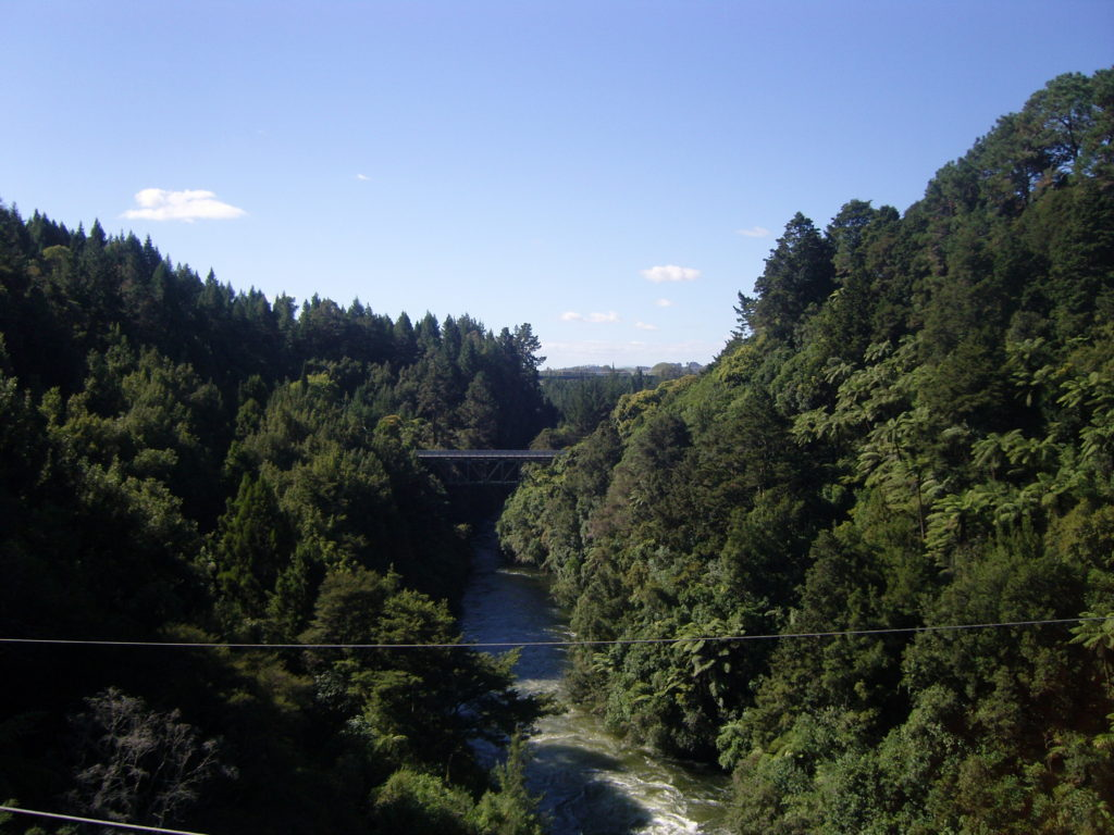 waikato river 1 swing bridge adventurefuel.org